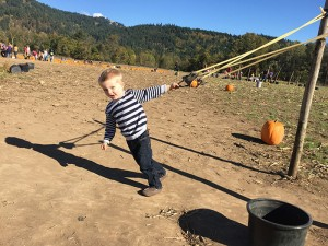 Pumpkin-Patch-Kids-Fun-Eugene